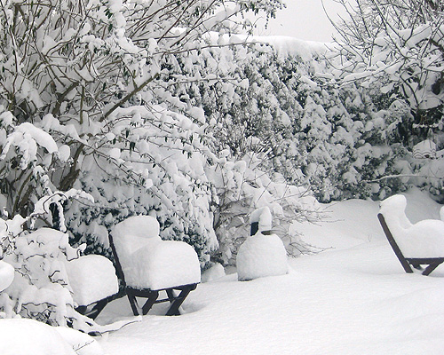 snowy garden chairs